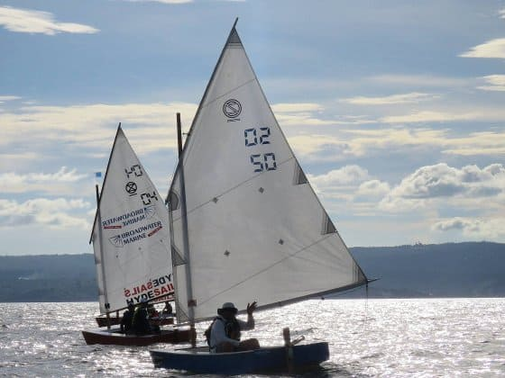 Oz Goose National Championship - cheapest racing class sail boat - storer boat plans